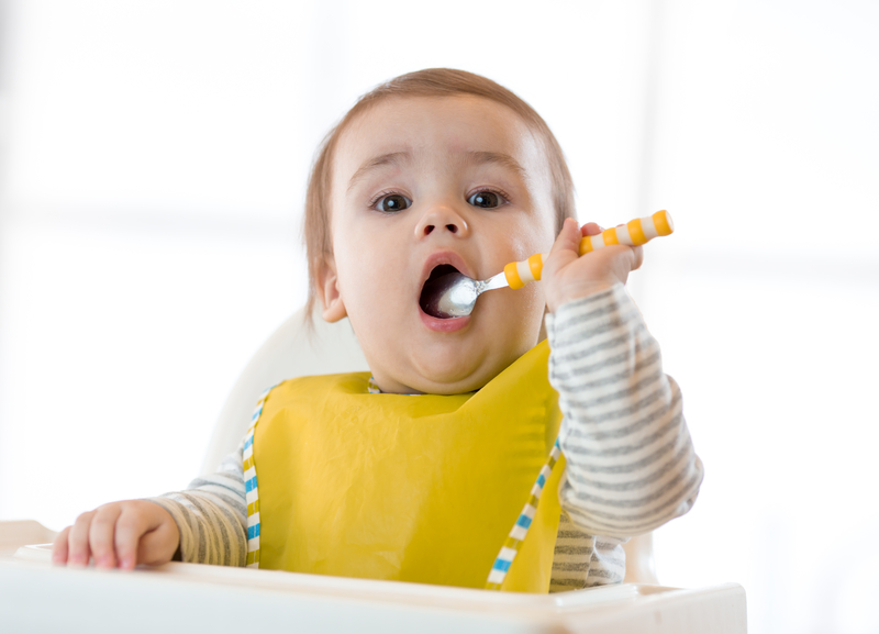 Baby-Led Weaning Blog — Little Gourmet - Baby Led Weaning