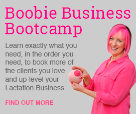 Boobie Business Bootcamp Banner MREC